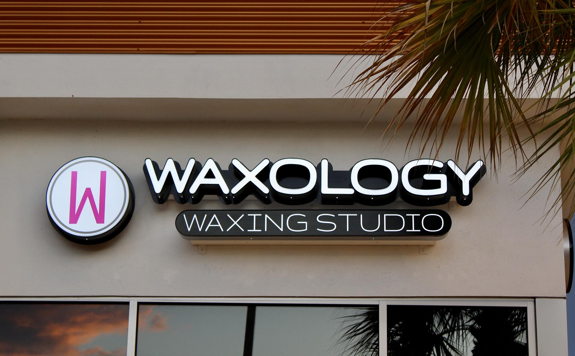 Waxology Front